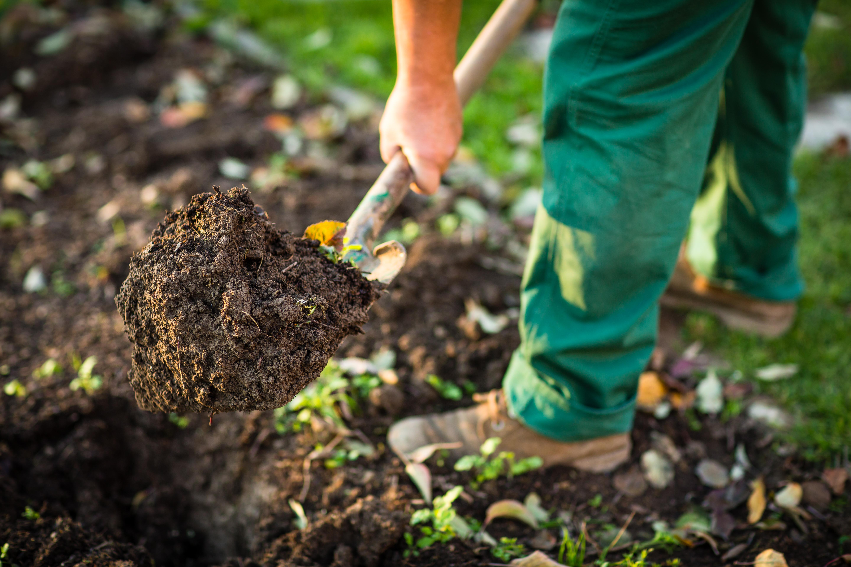 Produit Terreau horticole et de plantation - Alain Préfontaine